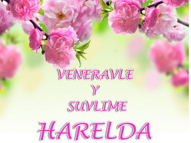 Palavras de El veneravidvisimo ARKANGEL MIGUEL